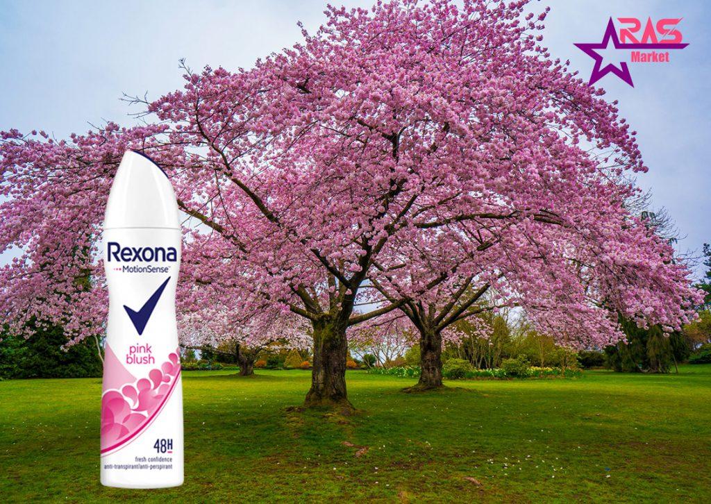 اسپری ضد تعریق رکسونا مدل Pink Blush حجم 200 میلی لیتر ، خرید اینترنتی محصولات شوینده و بهداشتی ، بهداشت بانوان ، rexona